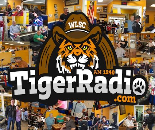 TigerCountryWebLogo.jpg (69459 bytes)